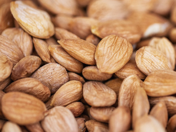 Almonds price 1 kg | Looking for affordable almond price