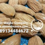 mamra almond exporting country